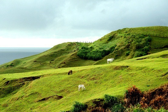 hills-of-batanes_thumb